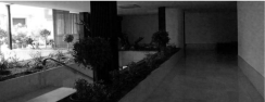 CODERCH|VALLS_girasol_PORTAL2