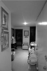 CODERCH|VALLS_girasol_ACCESO3
